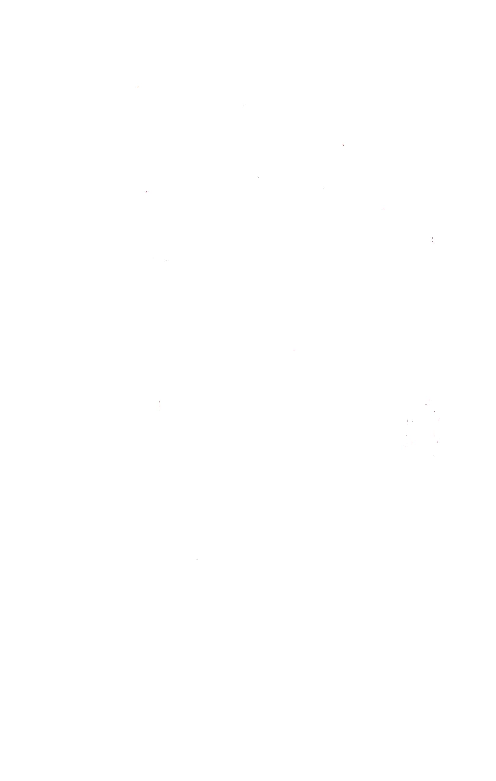 logoMoras-Blanc300dpi