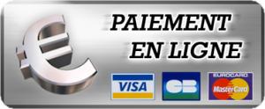 paiement en ligne TIPI